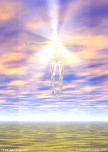 ascension-frank-borga